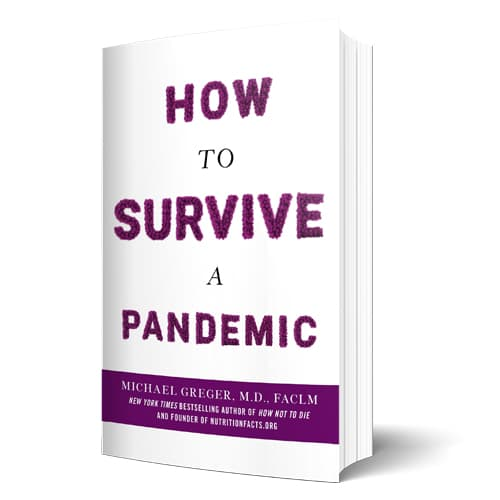How to Survive a Pandemic: Overcoming COVID-19 and Preventing the Next Deadly Outbreak