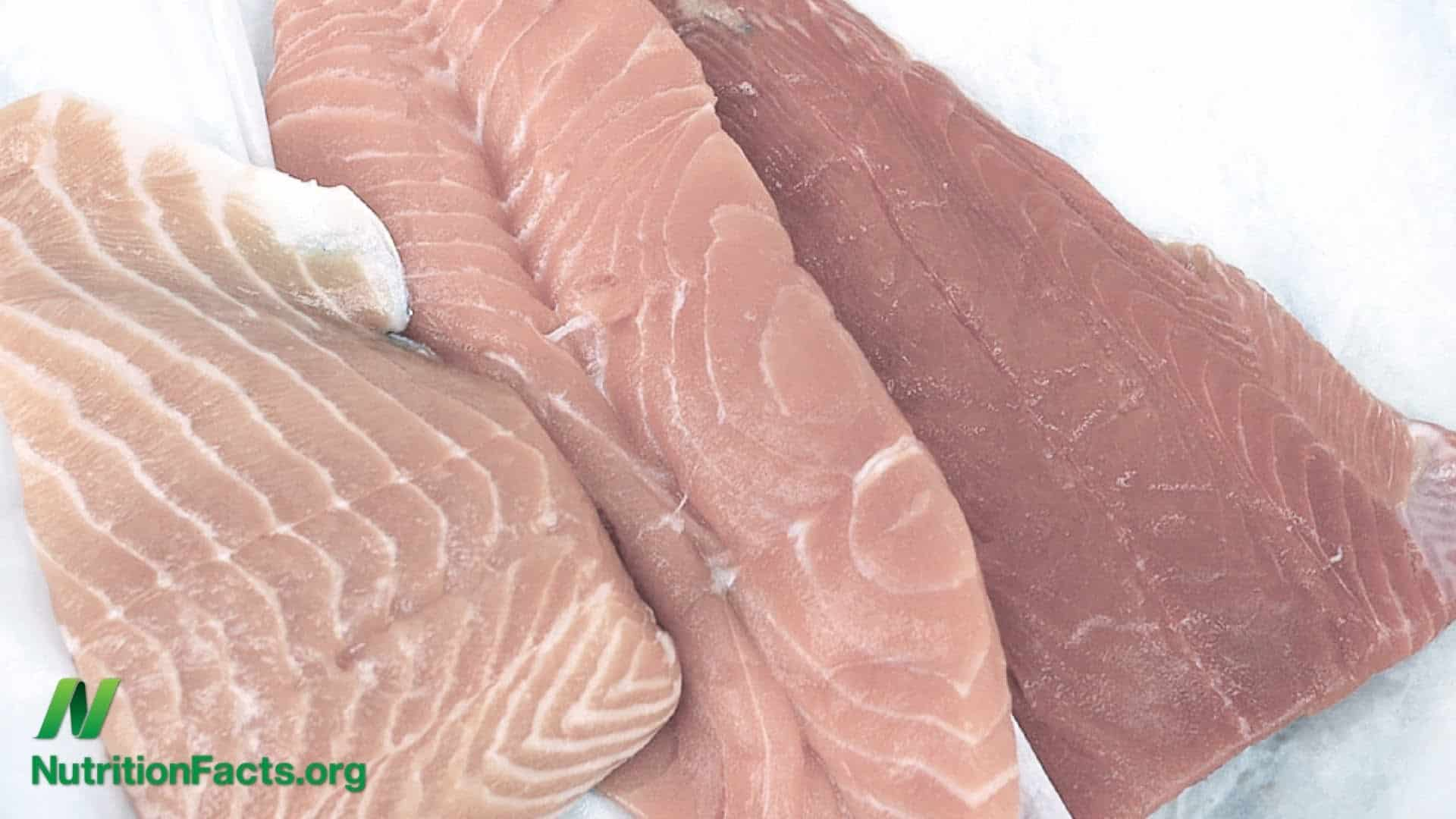 What Color Is Salmon Meat Naturally