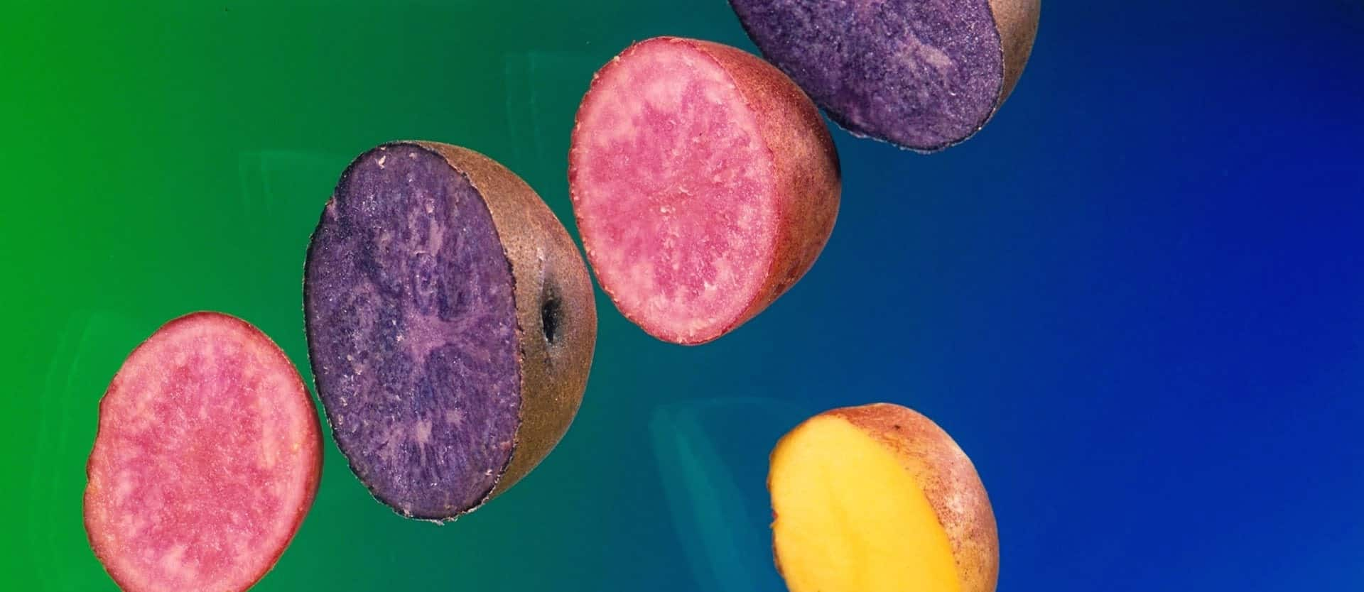 Anti-Inflammatory Effects of Purple Potatoes