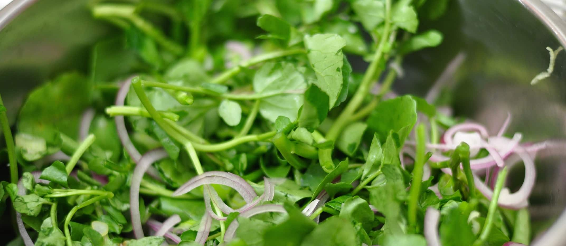 How Watercress Might Prevent Exercise-Induced Oxidative Stress