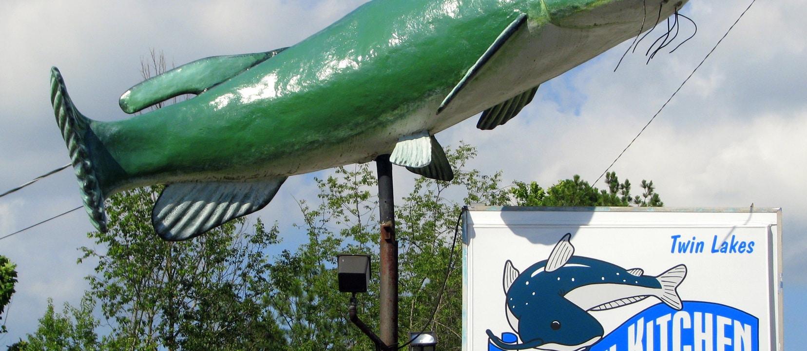 Dioxins in U.S. Farm-Raised Catfish