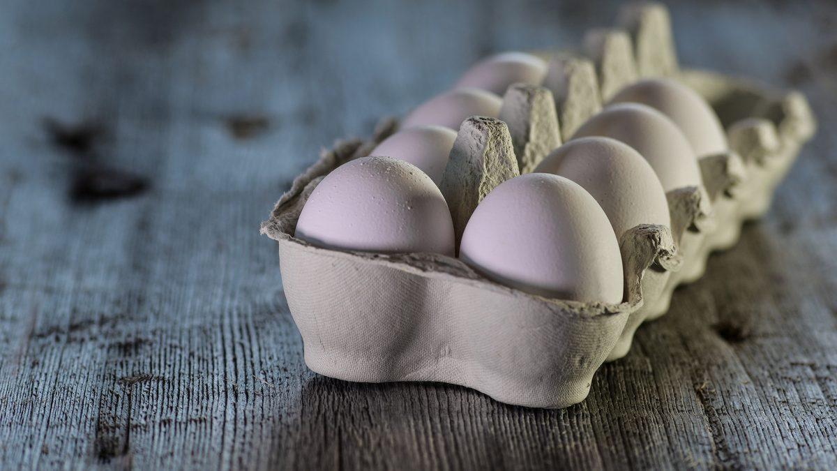 Egg Industry Response
