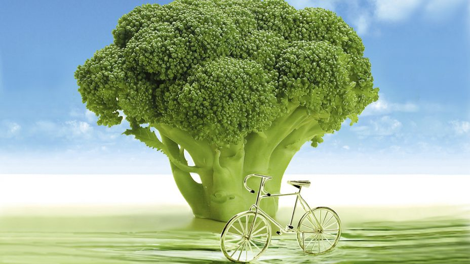 Best Food to Counter the Effects of Air Pollution