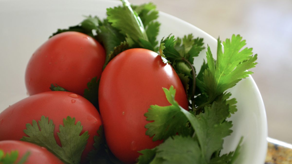 Best Foods for Lead Poisoning: Chlorella, Cilantro, Tomatoes, Moringa?