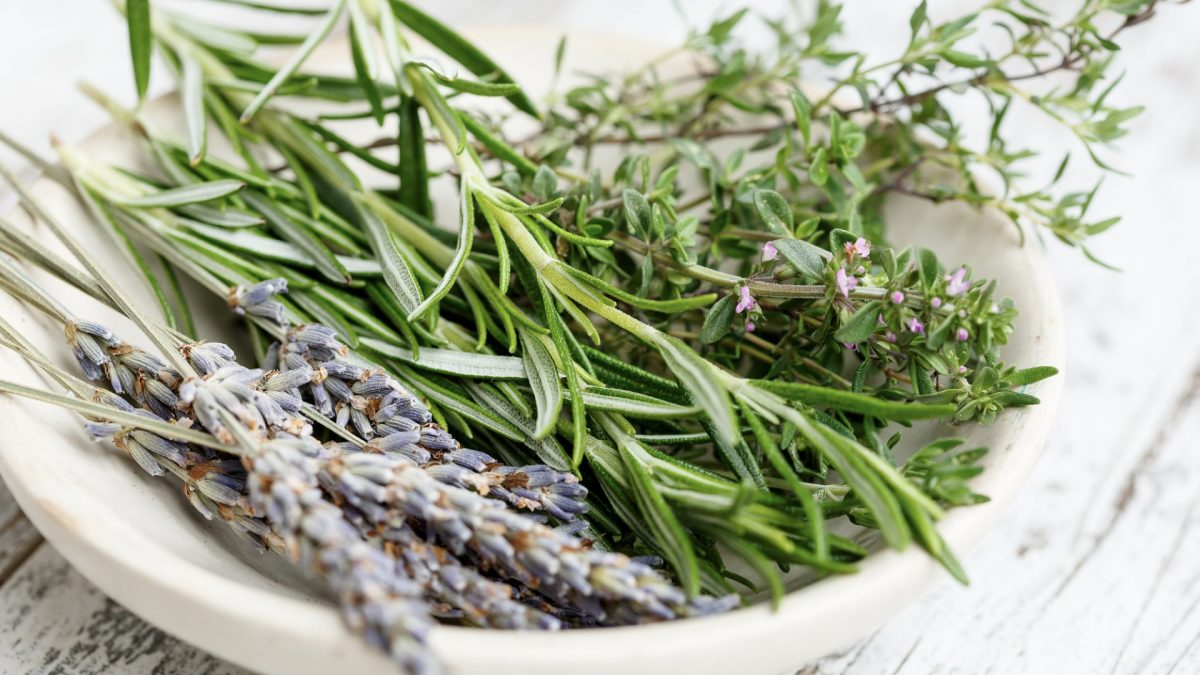 Best Aromatherapy Herb for Alzheimer's