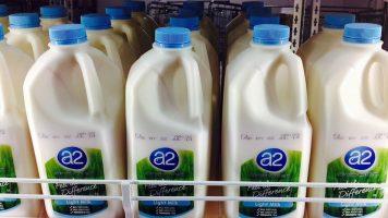 Does A2 Milk Carry Less Autism Risk?