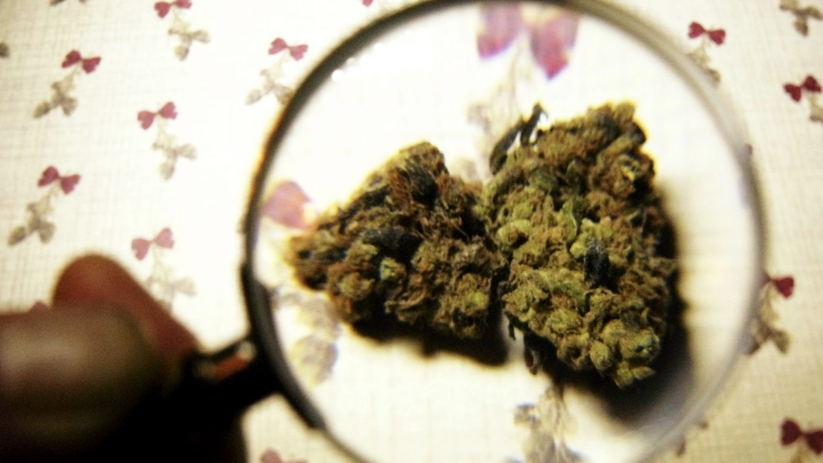 Does Marijuana Cause Health Problems?