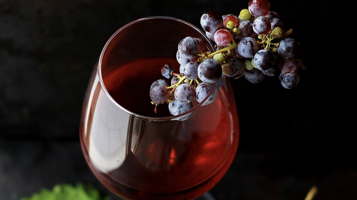 The Best Source of Resveratrol