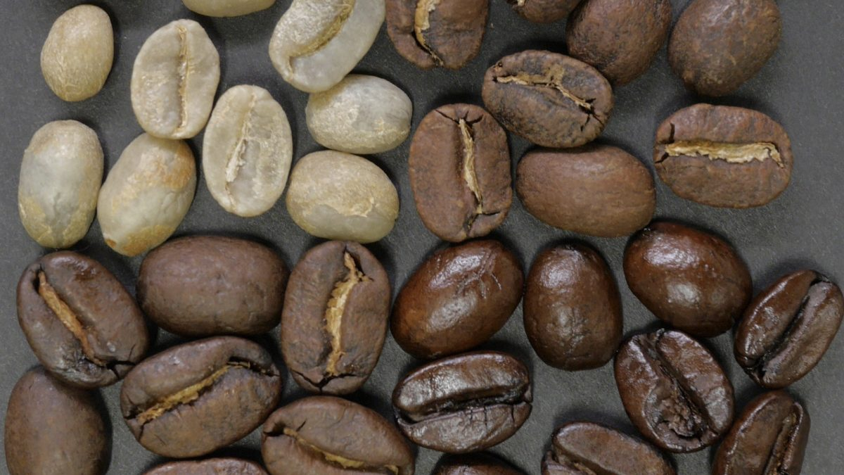 Which Coffee Is Healthier: Light vs Dark Roast?