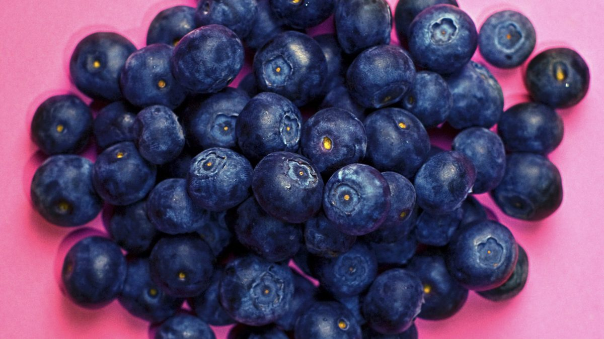 Blueberries for a Diabetic Diet and DNA Repair