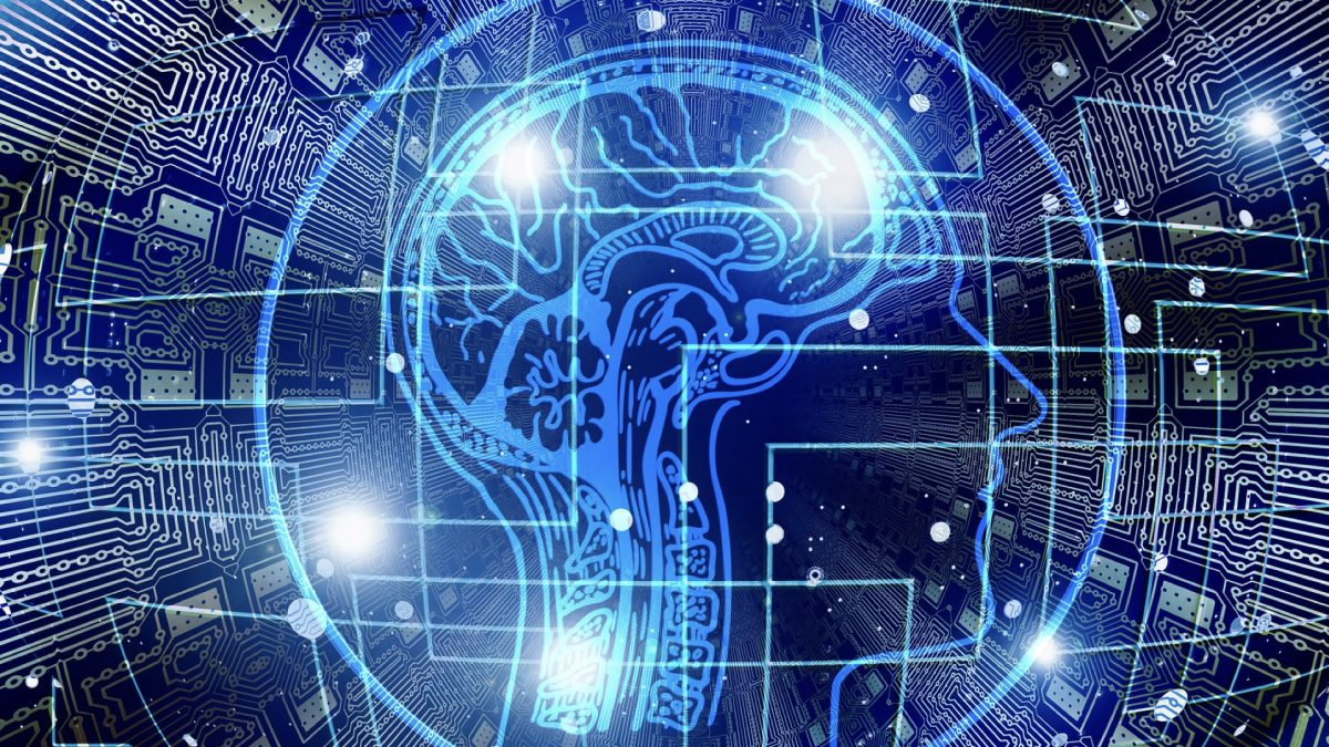 Should We Take DHA Supplements to Boost Brain Function?