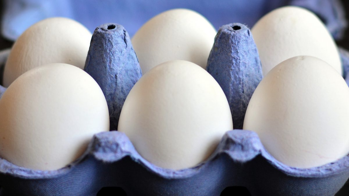 Eggs and cancer
