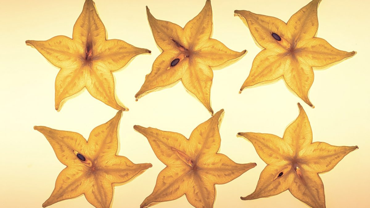 Neurotoxicity Effects of Star Fruit