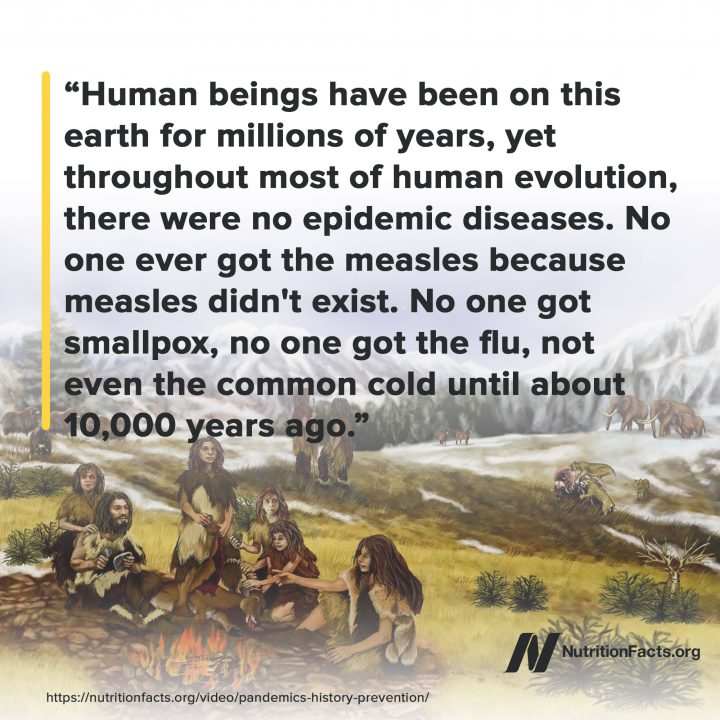 On epidemics throughout history