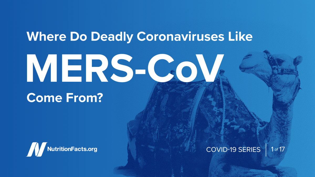 Where Do Deadly Coronaviruses Like MERS-CoV Come From? | NutritionFacts.org