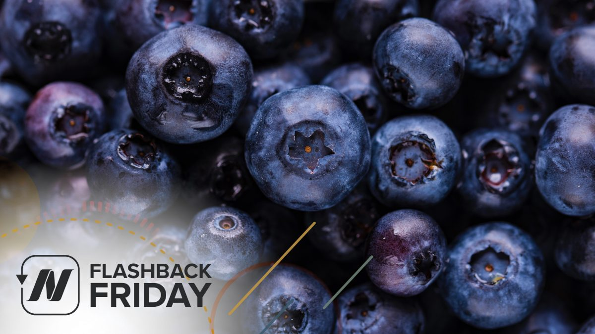 Flashback Friday: Benefits of Blueberries for the Brain | NutritionFacts.org