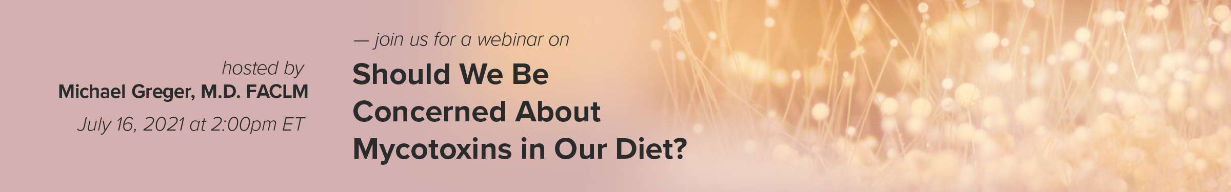Should We Be Concerned About Mycotoxins in Our Diet?